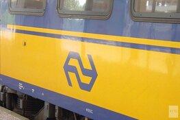 Man (41) trekt broek uit en wurgt conductrice in trein naar Haarlem