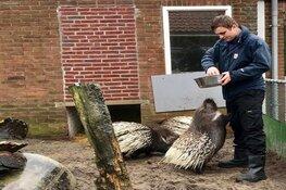 Dierentuin Animal Farm Beverwijk start nieuw project