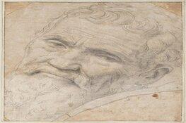 Alle Michelangelo's van Teylers Museum op reis