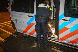 Man raakt tijdens uitlaten hond te water in Haarlem