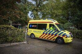 Vrouw gewond na val van paard in Vogelenzang
