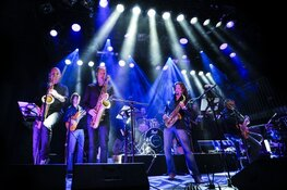 Steely Dan tribute band speelt sophisticated classic rock
