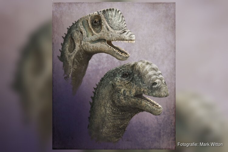 Dinomakers: twee eeuwen verbeelding van de oertijd