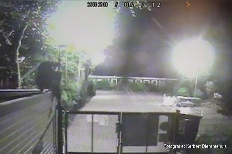 """Inbrekers richten veel schade aan bij dierenopvangcentrum in IJmuiden """"We zijn flink geschrokken"""""""