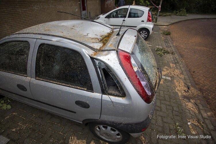 Auto's beschadigd door omgevallen boom door storm IJmuiden